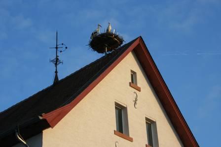 """Bild """"Tagebuch 12-03-06 007.jpg"""""""