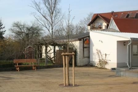 "Bild ""Tagebuch 12-03-23 Bank + Kastanie.jpg"""